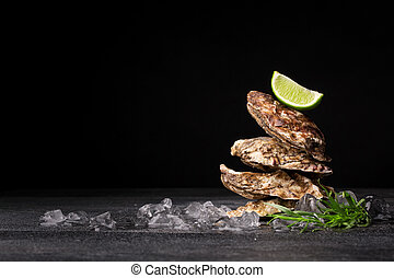 Close-up of four beautiful close oysters on a black background. Delicious tropical sea mollusk. The greatest delicacy. Copy space.