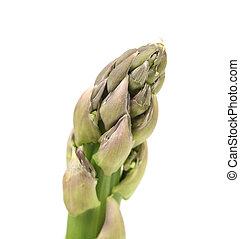 Close up of fresh asparagus spear