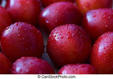 Close up of fresh cherry berries