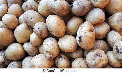 Close up of fresh organic potatoes