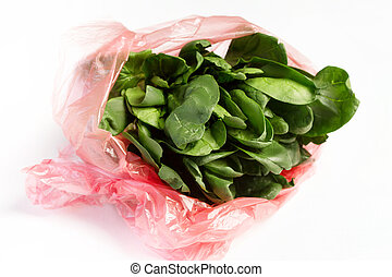 Close-up of fresh spinach salad in a plastic bag