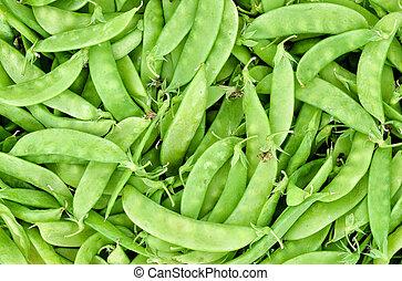 fresh sugar pea - close up of fresh sugar pea
