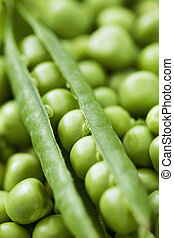 Close up of peapod on bed of peas