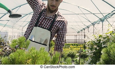 Close-up of garden tools. Gardener going to the greenhouse, watering plants from a green funnel. Garden center decorative plants and flowers. 120fps.