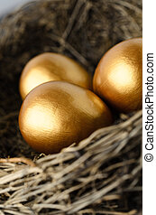 Close Up of Gold Eggs in Nest