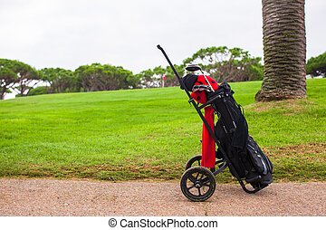 Close up of golf bag on a green perfect field