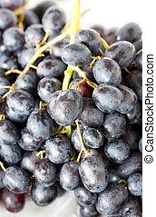 Close up of grape fruits.