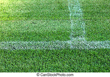 close up of green grass in the stadium.