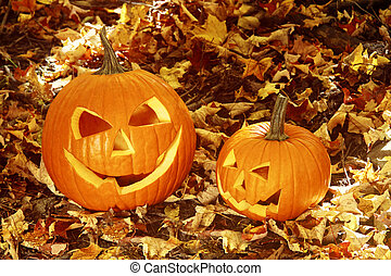 Close up of halloween pumpkins on leaves