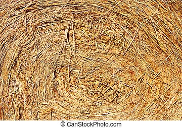 close up of hay
