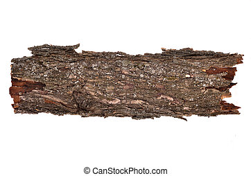 Close-up of isolated broken bark stub log with wooden...