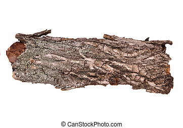 Close-up of isolated cracked bark stub log with wooden texture isolated