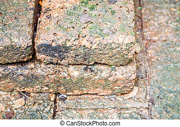 Close-up of laterite in garden