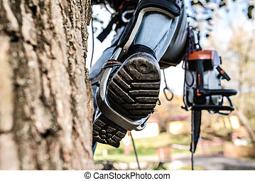Close up of leg of lumberjack with a chainsaw climbing a...