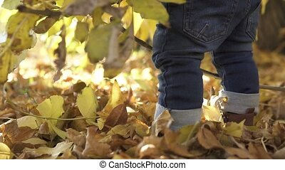 Close-up of legs in brown boots, Little one year old boy, stands near a tree on fallen foliage, in an autumn park