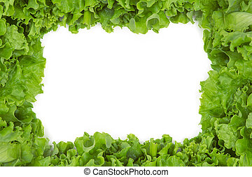 Close up of lettuce in frame shape