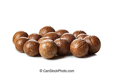 Close up of Macadamia Nuts isolated on white background.