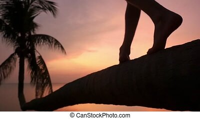 Close up of male legs are walking on a palm tree at tropical beach during beautiful sunset. Vacation time. Slow motion. 1920x1080
