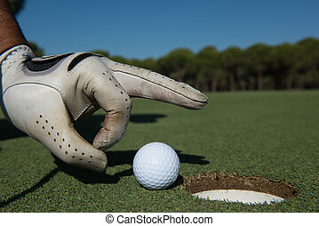 man's hand putting golf ball in hole