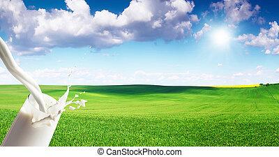 Close up of milk splash on meadow background