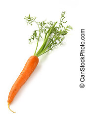 close up of one carrot on white background