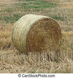 Close-Up of One Straw Bale in a Field