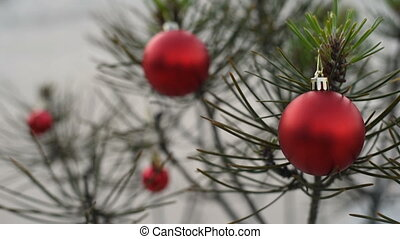 Close up of outdoor christmas pine tree bauble in winter -...