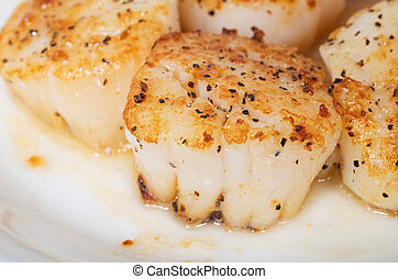 Close up of pan fried giant sea scallops