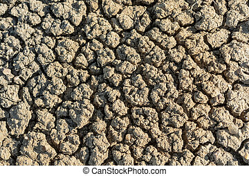 Close Up of Parched Earth