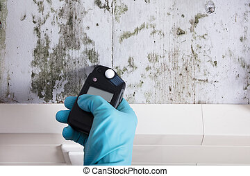 Close-up Of Person Hand Wearing Gloves Measuring Wetness Of A Moldy Wall