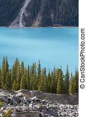 Close up of Peyto lake