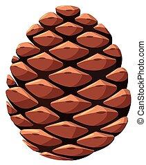 Close up of pine cone illustration