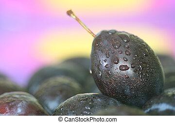 Close-up of plum