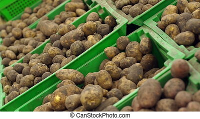 Close-up of potatoes in boxes on the counter in