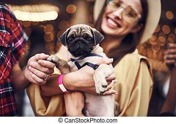 Close up of pretty puppy in the hands of smiling lady - Cute...