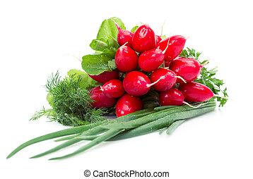 Close up of radish, onions, parsley, dill