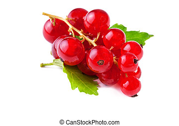 close up of red currant with leaf,  isolated on white background