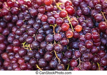 Close up of red grape