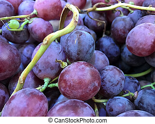 Close up of red grapes