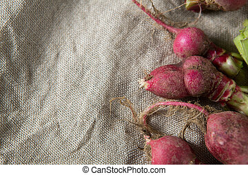 Close-up of red radishes