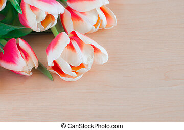 Close up of red tulips