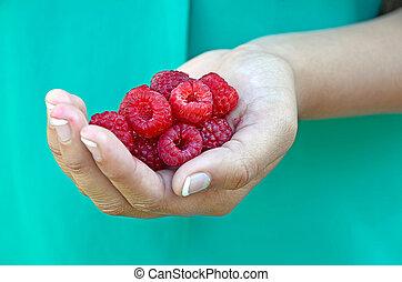 raspberries in young girl's hand