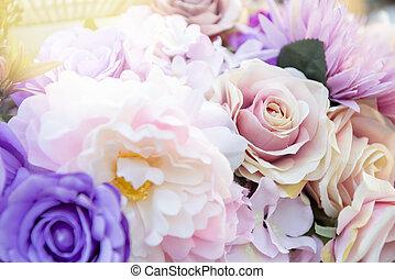 Close up of  rose flower.