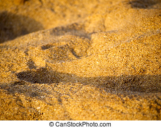 Close-up of sand on the beach