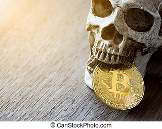 Close up of Skull biting Golden bitcoin on wooden table. The concept of investment and Fluctuation of bitcoin and cryptocurrency. The feeling of disappointed investors.