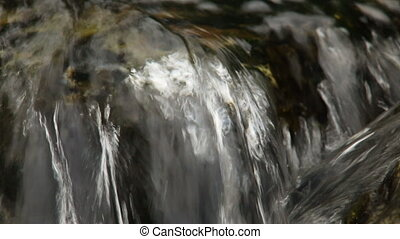 Close up of small waterfall and green plants in nature. Media with audio track