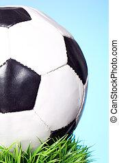 Soccer ball in grass