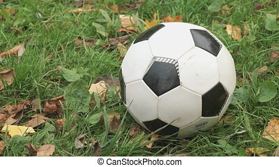 Close-up of soccer ball on the grass outdoors