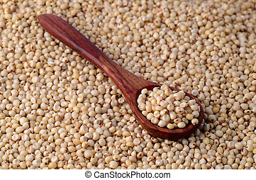 close up of Sorghum with wooden spoon.