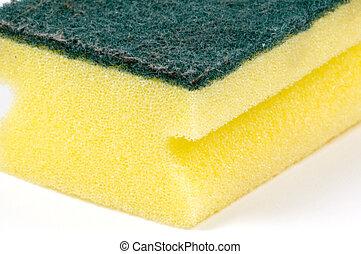 close up of sponge